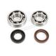 Main Bearing and Seal Kit - K017