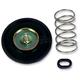 Carburetor Air Cut-Off Valve Set - 56-1019