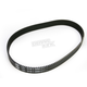 Primary Belt - 8mm x 38mm - BDL-138-38K