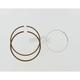 Piston Rings - 02.2020.100