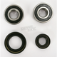 Front Wheel Bearing and Seal Kit - PWFWS-S14-000