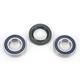 Front Wheel Bearing Kit - A25-1403
