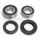 Rear Wheel Bearing Kit - 301-0133