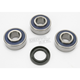Wheel Bearing and Seal Kit - A251366