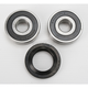Rear Wheel Bearing and Seal Kit - PWRWS-H29-000