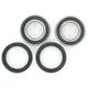 Rear Wheel Bearing Kit - PWRWK-Y77-000