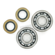 Crank Bearing/Seal Kit - 0924-0224