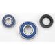 Front Wheel Bearing Kit - A25-1043