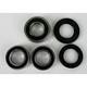 Rear Wheel Bearing and Seal Kit - PWRWS-S11-000