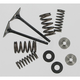 Intake Only Conversion Spring Kits - 40-40350