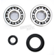 Crank Bearing and Seal Kit - 23.CBS13084