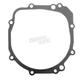 Stator Cover Gasket - EC519032AFM