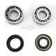 Crank Bearing and Seal Kit - 23.CBS21081