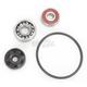Water Pump Repair Kit - WPK0048