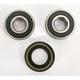 Front Wheel Bearing Kit - PWFWK-Y19-001