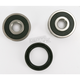 Rear Wheel Bearing Kit - PWRWK-H43-100