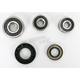 Rear Wheel Bearing and Seal Kit - PWRWS-Y36-000