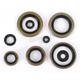 Oil Seal Set - 0935-0059