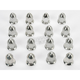 Polished Flat Nuts - 0223-0012
