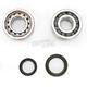 Crank Bearing and Seal Kit - 23.CBS62001