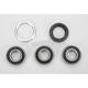 Rear Wheel Bearing Kit - PWRWK-H02-520