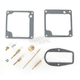 Carburetor Repair Kit - 18-2451