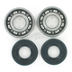 Crank Bearing/Seal Kit - 0924-0222
