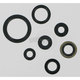 Oil Seal Set - 0934-0163