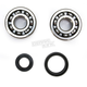 Crank Bearing and Seal Kit - 23.CBS31089