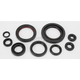 Oil Seal Kit - 0935-0385