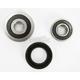 Rear Wheel Bearing Kit - PWRWK-Y40-230