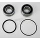 Rear Wheel Bearing and Seal Kit - PWRWS-H15-000