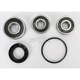 Rear Wheel Bearing and Seal Kit - PWRWS-H51-000