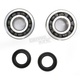 Crank Bearing and Seal Kit - 23.CBS42092