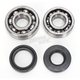 Main Bearing and Seal Kit - K007