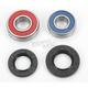 Front Wheel Bearing Kit - A25-1194