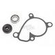 Water Pump Repair Kit - WPK0041