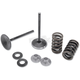 Intake Only Conversion Spring Kits - 40-40360