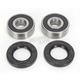Rear Wheel Bearing Kit - PWRWS-K16-000