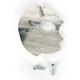 Brake Rotor Guard - QYAMDG