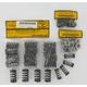 Valve Spring Kit - 40-40267