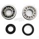 Crank Bearing and Seal Kit - 23.CBS61003