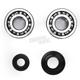 Crank Bearing and Seal Kit - 23.CBS23001