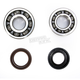 Crank Bearing and Seal Kit - 23.CBS22088