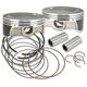 Replacement Piston Kit for 111 in./117 in./124 in. Motor - 106-3491A
