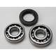 Bearing and Seal Kit - 14-1029
