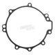 Stator Cover Gasket - EC1903032AFM