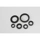 Oil Seal Kit - 0935-0389