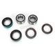 Front Wheel Bearing Kit - PWFWK-C03-000