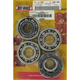 Main Bearing and Seal Kit - K225